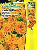 Mädchenauge 'Early Sunrise' leuchtend gelb, reichblühend , halbgefüllt, Staude ( mit Stecketikett) 'Coreopsis grandiflora'