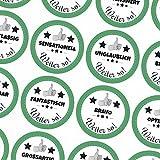 48 runde Aufkleber / Motivation / Lob / Erziehung, Schule, Kita, Kindergarten, Vorschule, Uni / Aufkleber Sticker zum Motivieren / Für Lehrer und Schüler