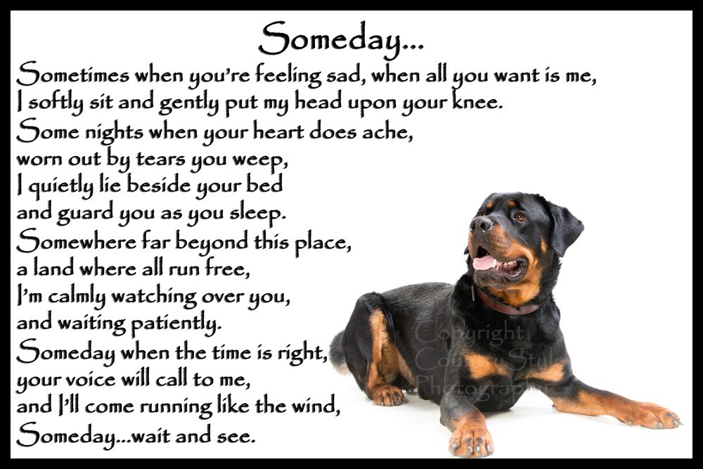Rottweiler dog bereavement pet loss Flexible Fridge Magnet – Someday
