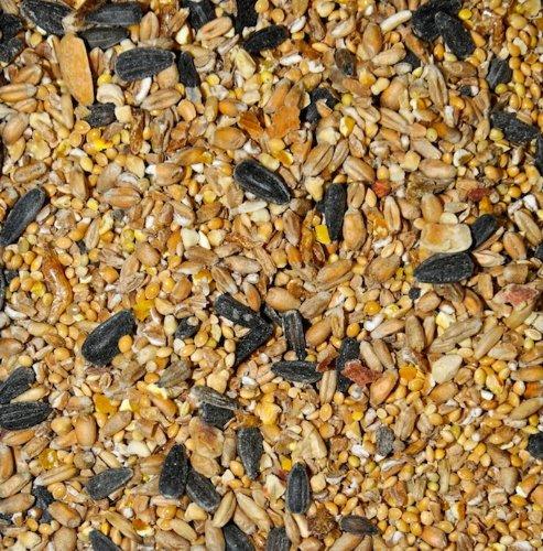 Dawn Chorus Ganzjahres-Futtermischung für Wildvögel, mit Insekten, 12,5kg - Dawn Products Food