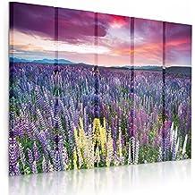 Feeby Frames, Cuadro en lienzo - 5 partes - Cuadro impresión, Cuadro decoración, Canvas (PRADO CON LAS FLORES,VIOLETA, ROSADO) 100x200 cm, Tipo C
