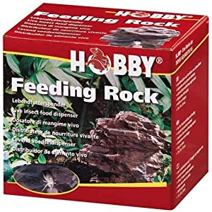 Feeding Rock, 13x14x10 cm