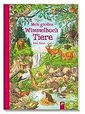 Die große Anne Suess Wimmelbox: 3 Wimmelbücher im Schuber - Anne Suess