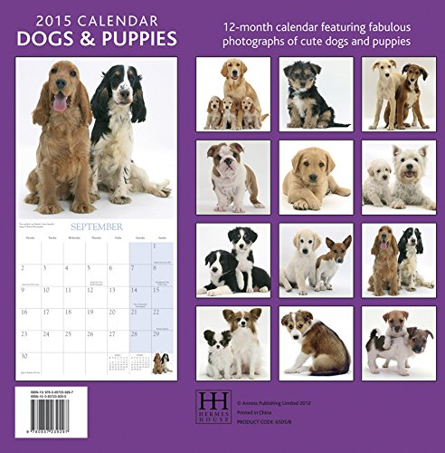 2015 Calendar: Dogs & Puppies: 12-Month Calendar Featuring Wonderful Photography and Space in Write in Key Events