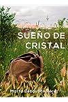 https://libros.plus/sueno-de-cristal-novela-romantica-ganadora-de-los-eriginal-books-2017/