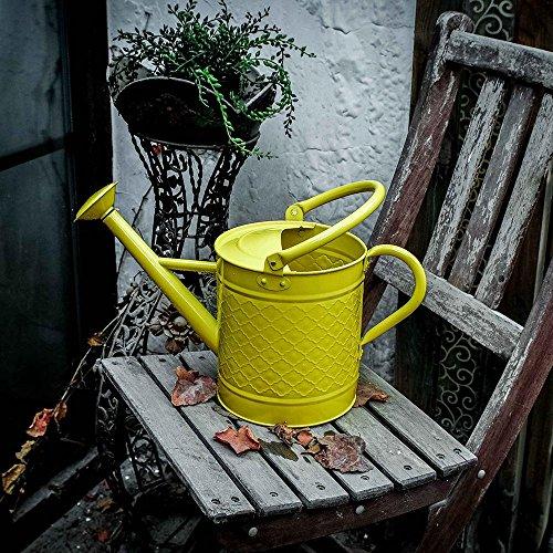 eßkanne Metall verzinkt Aktivität Dusche 4 Liter , yellow (Verzinkt Dusche)