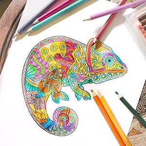 61sdnH8zcCL. SS300  - Lpices-de-Colores-72-120-con-Caja-de-Metal-de-Zenacolor-72-y-120-Colores-nicos-Fcil-Acceso-con-Bandejas-Conjunto-Ideal-para-Artistas-Adultos-y-Nios