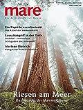 mare - Die Zeitschrift der Meere / No. 124 / Riesen am Meer: Das Wunder der Mammutbäume