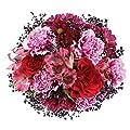 MIFLORA Blumenstrauß Sweet Love | Entworfen von der Europameisterin von MIFLORA - Du und dein Garten