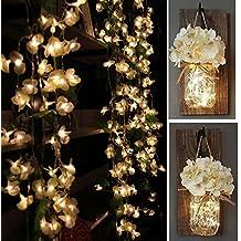 Luces de cortina LED con flores Begonia, Yoyoukit 7.3 ft 8 modos de hadas Navidad cadena de luz de la cortina para la boda decoración de la pared del dormitorio