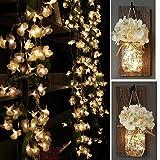 Yoyokit Begonie-geformt Lichterkette Vorhang Weihnachten 2M 100LEDs 8 Modi Innen Außen LED lichtervorhang für Weihnachten Party Hochzeit Weihnachtsbeleuchtung Deko
