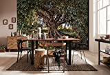 Komar - Fototapete OLIVE TREE - 368 x 254 cm - Tapete, Wand, Dekoration, Wandbelag, Wandbild, Wanddeko, Olivenbaum, Blätter, Natur, Baum - 8-531