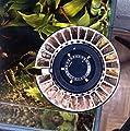 Grässlin rondomatic 400Automatischer Futterspender für Aquarien