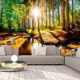 murando - Fototapete Wald 400x280 cm - Vlies Tapete - Moderne Wanddeko - Design Tapete - Wandtapete - Wand Dekoration - Waldlandschaft Sonne grün Natur Wasser c-B-0267-a-a