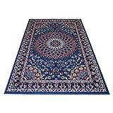 WEBTAPPETI billige Teppich mit persischen Design Klassisch Teppich Hellblau Royal Shiraz 2082-LIGHT Blue 200x300