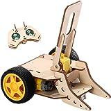 Electric Motor Science Kit,Stridsrobot fjärrkontrollleksak,STEM Bygga pedagogiska gåvor för träpussel 3D