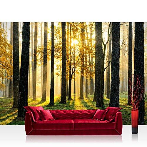 fototapete-wald-alle-waldmotive-auf-einen-blick-vlies-premium-plus-200x140-cm-sunlight-forest-ll-wal