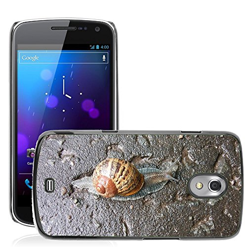 just-cover-hot-style-cell-phone-pc-hard-case-cover-m00140063-slug-lento-natura-animale-della-lumaca-