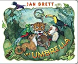 Image de The Umbrella: board book