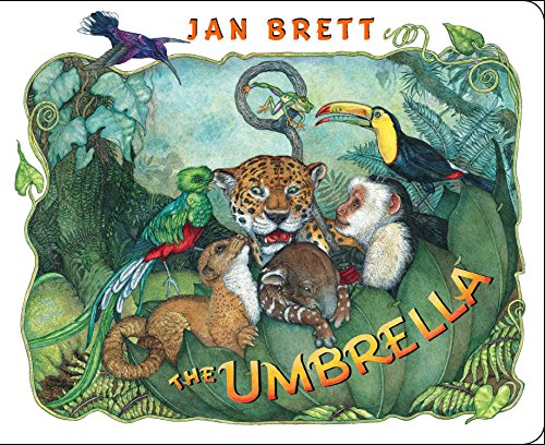 The Umbrella: board book (English Edition)