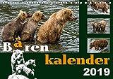Bärenkalender (Tischkalender 2019 DIN A5 quer): Braunbären - 36 faszinierende Fotos in einem Kalender (Monatskalender, 14 Seiten ) (CALVENDO Tiere) - Max Steinwald