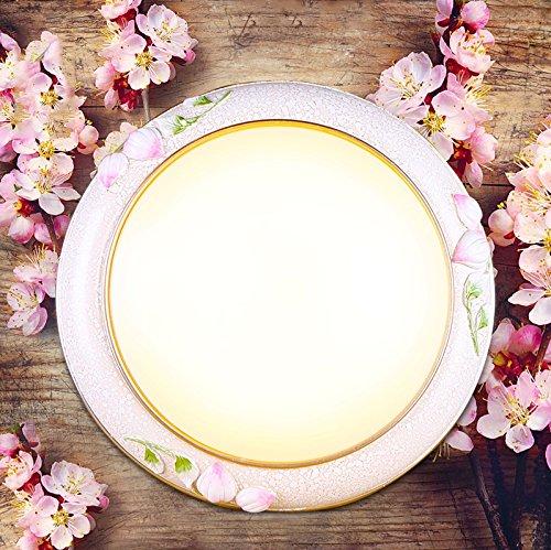 cinese-pastorale-led-lampada-da-soffitto-rotonda-dimming-lighting