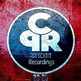 Conquer The World (Original Mix)