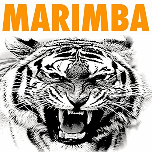 Eye Of The Tiger (Marimba Remix From The Rocky Movie Soundtrack)