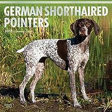 German Shorthaired Pointers - Deutsch Kurzhaar 2018 - 18-Monatskalender mit freier DogDays-App: Original BrownTrout-Kalender [Mehrsprachig] [Kalender] (Wall-Kalender)