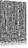 Monocrome, Birkenwald, Format: 60x40 auf Leinwand, XXL riesige Bilder fertig gerahmt mit Keilrahmen, Kunstdruck auf Wandbild mit Rahmen, günstiger als Gemälde oder Ölbild, kein Poster oder Plakat