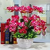 GBHNJ Artificial Flowers GBHNJ Falsch Rose Red Butterfly Orchid Deko Vase Künstliche Fe