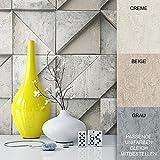 Steintapete Vliestapete Hellgrau Edel , schöne edle Tapete im Grafik Design , moderne 3D Optik für Wohnzimmer, Schlafzimmer oder Küche inklusive der Newroom Tapezier Profibroschüre mit super Tipps!