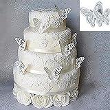 Lucky Will 2 Pcs Mariposas de plástico Cake Moldes Cortadores de Émbolo Decoración Kit de herramientas para fondant galletas molde