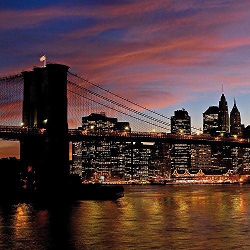 Apple iPhone 4 Housse Étui Silicone Coque Protection New York Night Pont Ville Sideflip Sac