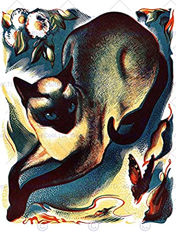 PAINTINGS ANIMAL CAT BUTTERFLY SIAMESE IMPRIMER AFFICHE FINE ART PRINT POSTER 30x40cms CC1049