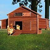 Zooprimus Poulailler en bois pour jardin extérieure cage canard équipé 2 nichoirs 188 x 87 x 113 cm -- 129 Ferme de terrain