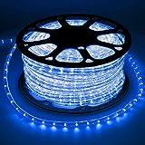 ECD Germany 30m LED Lichterschlauch Blau 230V AC Stromverbrauch ca. 2W pro Meter 13 mm Durchmesser IP44 Schutzklasse 360° Ausstrahlungswinkel 36 LED Lampen/Meter nicht Dimmbar