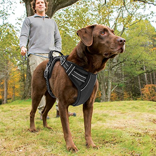 Poppypet No-Pull-Hundegeschirr Haustier sicher Kontrolle Easy Soft Gehen gepolstertes Hundegeschirr aus Nylon Schwarz M - 2