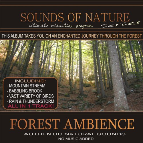 forest-ambience