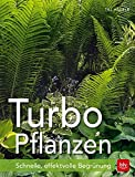 Turbo-Pflanzen: Schnelle, effektvolle Begrünung