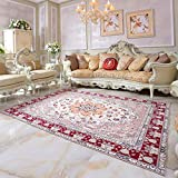 Traditioneller Vintage Persian Floral Oriental Area Rug, Easy Clean Stain Fade resistent Classic Thick Soft Living Dining Room Teppich,#C,200×300cm(6.5'x10')