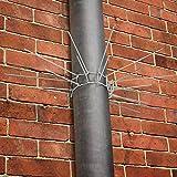 Timbertech - Collar de alambre con espinas contra animales dañinos - apto para tubería, árboles y columnas - número de espinas: 30 piezas
