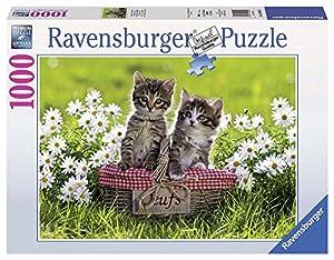 Ravensburger - Puzzles 1000 Piezas, diseño Picnic (19480 3)