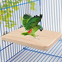 UxradG Percha de Pájaros de Juguete de Plataforma de Perca, Madera Natural para Perca de Pájaros de Mascota, Hámster de Ardilla, Loro, Perca de Pájaro