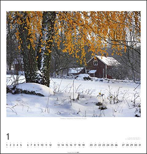 Schweden 2020 46x48cm: Alle Infos bei Amazon