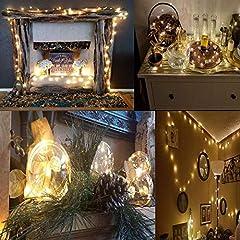 Idea Regalo - Salcar LED colorati corda leggera a 10 metri / 33 piedi 100 diodi all'interno filo di rame Micro per le feste di Natale per la decorazione di feste (bianco caldo)