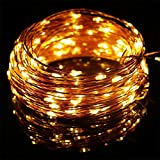 FFNW 10M Copper Wire Fairy Lights Waterproof 100 LED String Starry Lights for Indoor, Outdoor, Bedroom Garden Patio Wedding Fence Christmas Tree Decoration