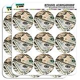 Best Graphics and More Bills - graphique et plus 2«Vingt Dollar Bills Argent Monnaie Review