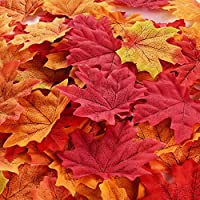 BBTO 500 Pieces Assorted Mixed Fall Leaves Colored Artificial Maple Leaves Weddings, Events Decorating