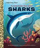 Best Books About Kindergartens - My Little Golden Book About Sharks Review